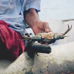 краб на озере коггала