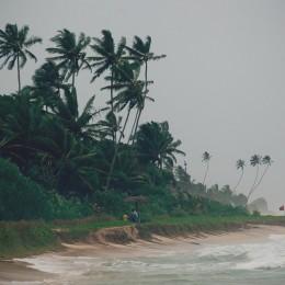 влаственный океан и туман у берега