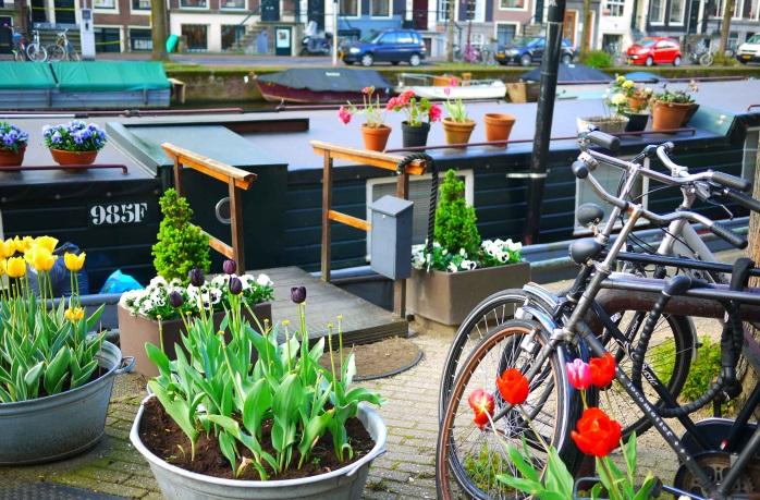 Прелесть Амстердама в деталях